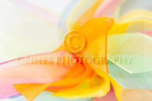 colorful bow close-up